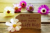 Sunny Label Life Quote Its The Little Things That Make Life Big With Cosmea Blossoms
