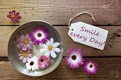 Silver Bowl With Cosmea Blossoms With Life Quote Smile Every Day