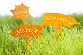 Three Labels With French Merci Which Means Thank You On Grass