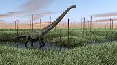 mamenchisaurus in swamp