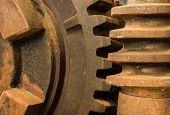 pic of worm  - close up of a gearing know as a worm drive - JPG