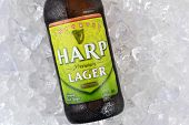 Harp Lager On Ice Closeup