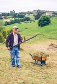 foto of wheelbarrow  - Portrait of senior man raking hay with pitchfork and wheelbarrow on a field - JPG