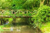 pic of english cottage garden  - Old small bridge over river stream creek in green garden - JPG
