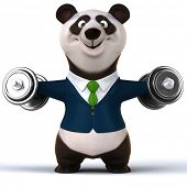 pic of panda  - Fun panda - JPG