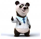 foto of pandas  - Fun panda - JPG