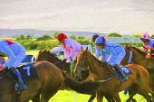 picture of race track  - Horse Race on a grass race track - JPG