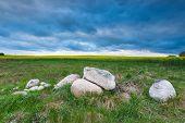 stock photo of rape-field  - Stones on field near rapeseed field under dark cloudy sky - JPG
