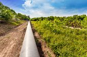stock photo of pipeline  - Petroleum Pipeline - JPG