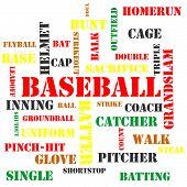 Baseball Terms Word Cloud