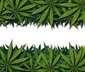 Marijuana Border Design poster