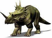 Styracosaurus White