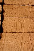 foto of skarabaeus  - ancient karnak temple in luxor in egypt - JPG