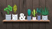 Постер, плакат: Succulents and cactus plants in pots