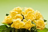 stock photo of yellow rose  - Bouquet of yellow roses on green background - JPG