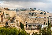 Mount Of Olives In The Jerusalem