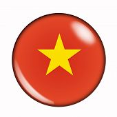 Button Flag Of Vietnam