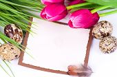 Banner add with Easter quail eggs and spring flowers