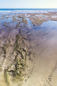 Strand van de Algarve