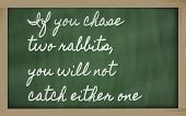 Expression -  If You Chase Two Rabbits, You Will Not Catch Either One - Written On A School Blackboa