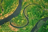 Belarus. Aerial View Green Forest Woods And River Landscape In Sunny Spring Evening. Top View Of Bea poster