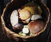 Wild Edible Mushrooms