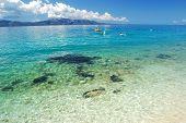 dalmatian summer beach