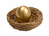 Golden Egg Standing In Nest Isolated