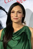 LOS ANGELES - JAN 24:  Famke Janssen arrives at the the 'Hansel And Gretel: Witch Hunters' premiere