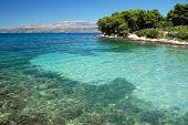 dalmatian beach, croatia