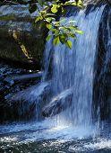 Insular Waterfall
