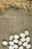 Organic White Domestic Eggs On Sackcloth And Straw poster