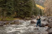 stock photo of fly rod  - Fly Fisherman in a mountain stream with a fly rod - JPG