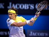 MELBOURNE - JANUARY 24: David Ferrer of Spain in his quarter final loss to Novak Djokovic of Serbia at the 2013 Australian Open on January 24, 2013 in Melbourne, Australia.