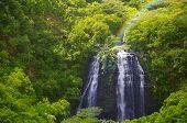 Waterfall In Hawaii, Kauai