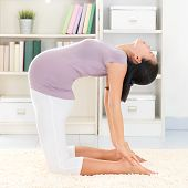 Maternity health concept. Full length healthy 8 months pregnant calm Asian woman meditating or doing yoga exercise at home. Relaxation. Yoga camel pose.