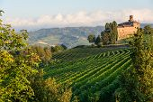 The Langhe in Piedmont