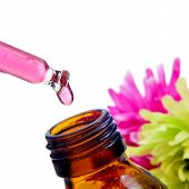 closeup of a dropper bottle with Bach flower remedy, on a white background