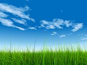 high resolution 3d green grass over a blue sky with white clouds as background and a clear horizon w
