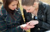 Girls Examine Lines On A Palm