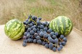two watermelons and grape