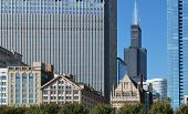 image of willy  - The Chicago skyline and architecture including Willis Tower - JPG