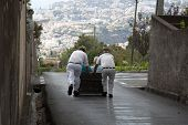 picture of toboggan  - FUNCHAL, PORTUGAL- NOVEMBER 01: Toboggan riders starting dive with the sledge on November 01, 2011 in Monte- Funchal, Portugal. This is done on public streets and is an tradition only of this island
