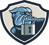 stock photo of mongrel dog  - Illustration of an bulldog dog mongrel head mascot biting a padlock facing front set inside shield crest on white background done in retro woodcut style - JPG