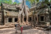Giant roots at Ta Prohm
