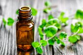 stock photo of peppermint  - Mint oil in a bottle and fresh leaves - JPG