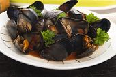 picture of clam  - Clams in tomato sauce with vegetables - JPG
