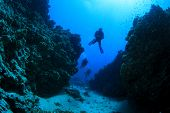 stock photo of crevasse  - Scuba Diving in underwater canyon - JPG
