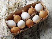 Egg's Box