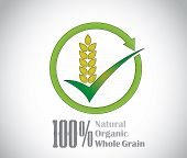picture of whole-grain  - natural organic whole grain food product symbol icon concept art - JPG